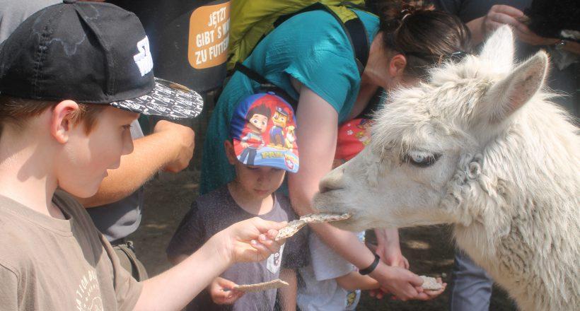 Tierpark zum Anfassen